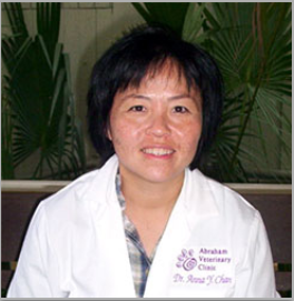Team member Dr. Anna Chan the veterinarian at Abraham Veterinary Clinic